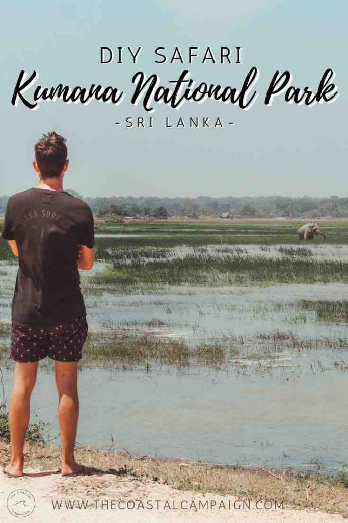 Kumana National Park Safari | DIY